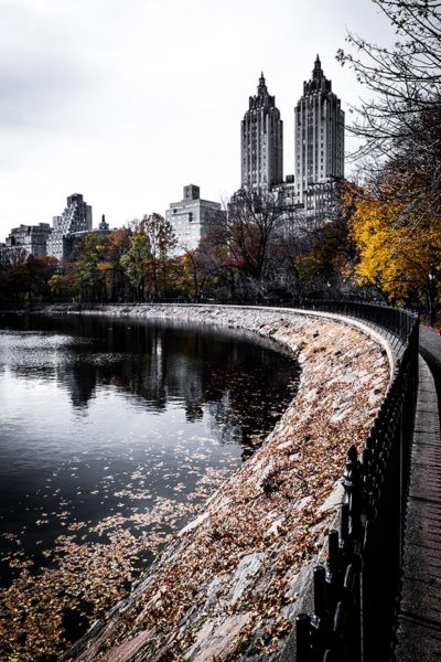 Central Park || Manhattan || NY || USA